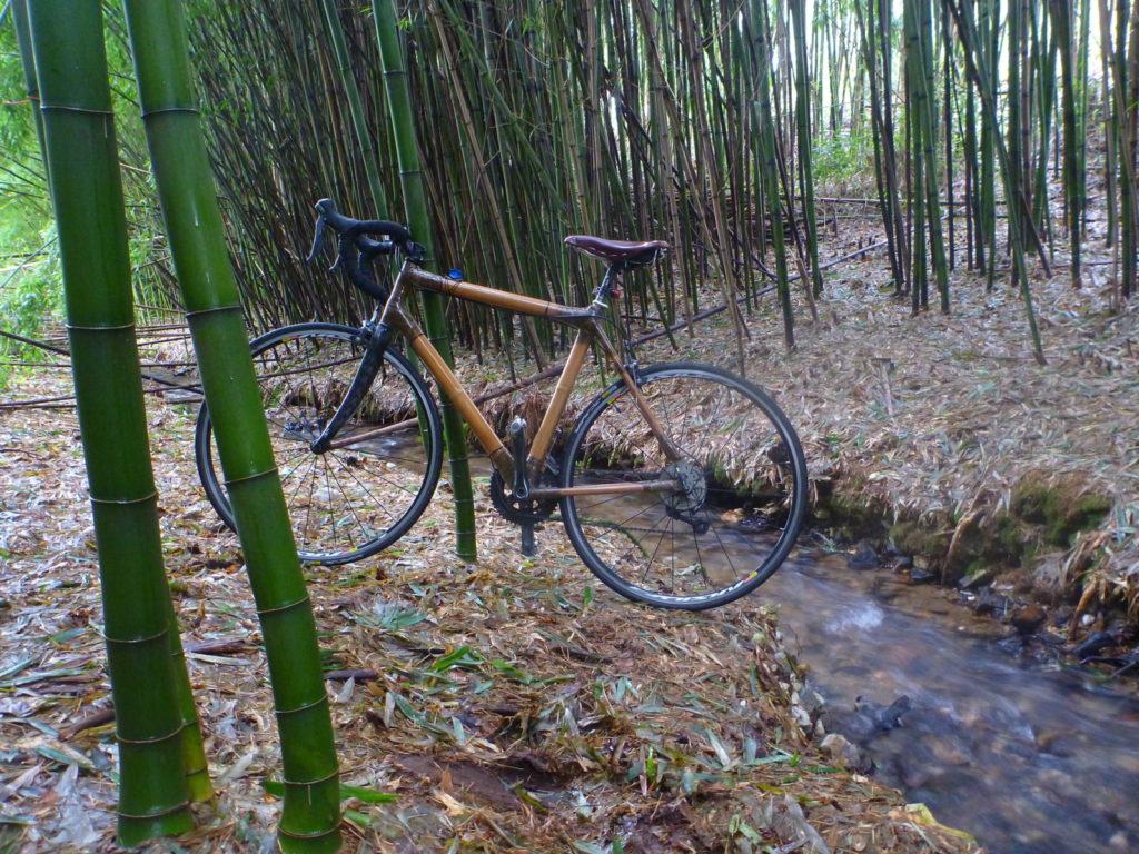 Vélo en bambou dnas la bambouseraie