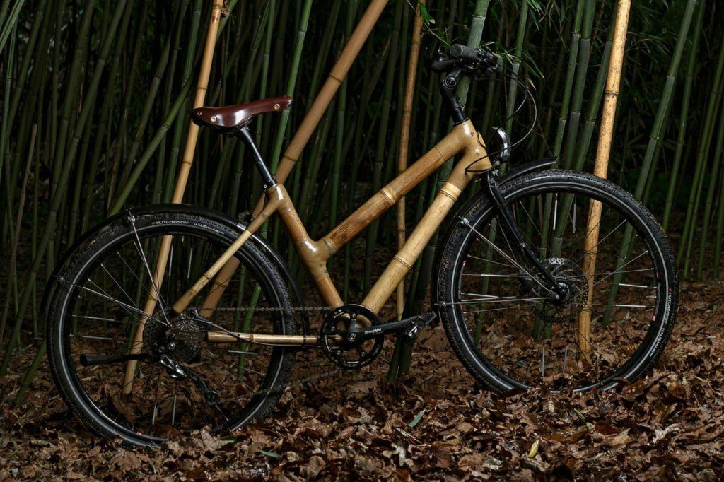 Breizhtois dans la bambouseraie